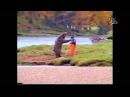 ролик Bear Fight признан самым смешным в истории рекламы