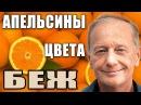 Михаил Задорнов. Концерт Апельсины цвета беж