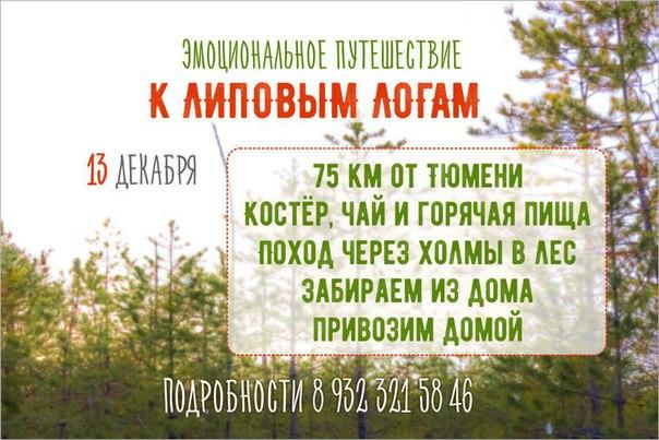 Куда сходить в Тюмени в выходные: 12 - 13 декабря 12
