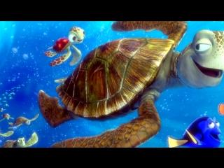«Наташка-черепашка» под музыку Натали-Морская черепашка - АНТОНОВА НАТАШКА =DD(Greysound 2010) - Без названия. Picrolla