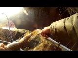 Рыбалка Под Каким Прикрытием Целенаправленно Уничтожить Сеть Чтобы Не Получить По Морде