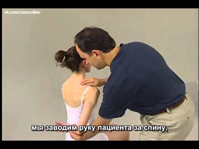 Пальпация мышц плечевого пояса