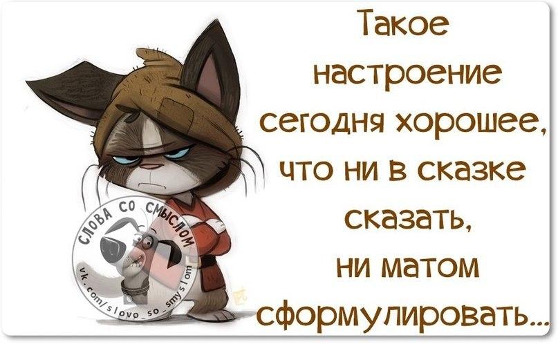 http://cs628019.vk.me/v628019753/32d/bBaAPAkcLFU.jpg