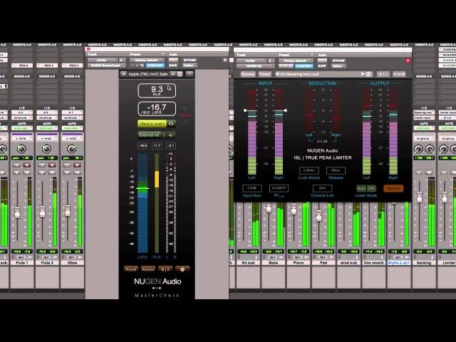 Nugen Audio MasterCheck Review