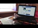 Говорящий попугай, Тоша! Тоша мальчик, Тоша, птичка)))