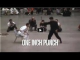 Amazing Bruce Lee ONE INCH PUNCH