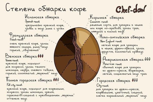#Бруно #корисна_інформація #цікаво_знати #Дрогобич #смажити_каву