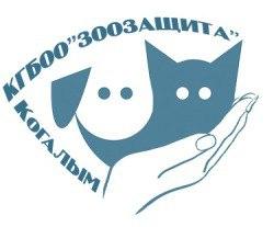 форум сайта зоозащита-когалым.рф