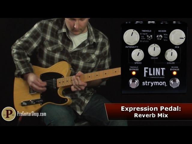 Strymon Flint - Tremolo Reverb