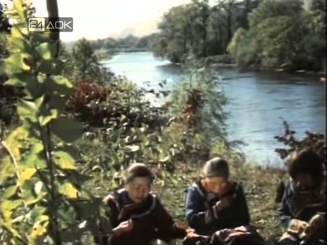 Секреты тайги Фильм о красотах и величии