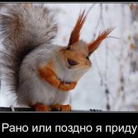 Святослав Александрович