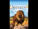 «Африка 3D» (Faszination Afrika 3D, 2011) смотреть онлайн в хорошем качестве HD