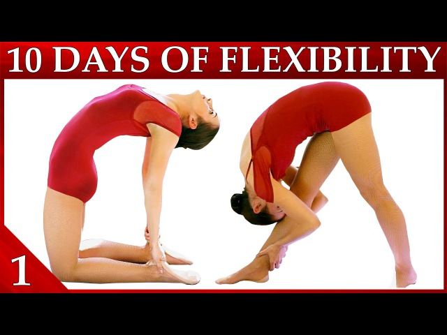 10 Day Flexibility Challenge Day 1 – Basic Stretches Warmup Workout Dance with Catherine