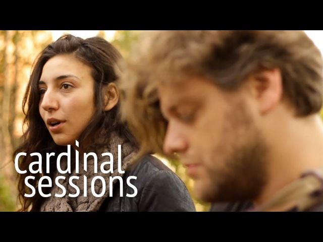 Intergalactic Lovers Delay CARDINAL SESSIONS Traumzeit Festival Special