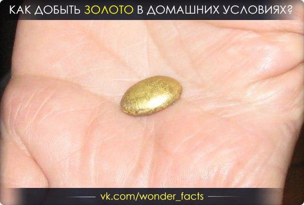 Добыть золото домашних условиях