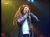 13. Bob Marley &amp The Wailers - Zion Train Dortmund 1980