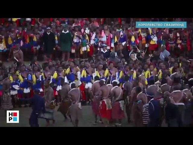 18 Свазиленд Смотрины королевских невест