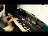 Pearl Jam -  Yellow Ledbetter -  piano cover with a cat