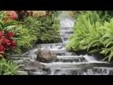 Дханвантари (Dhanvantary) Relaxation Music
