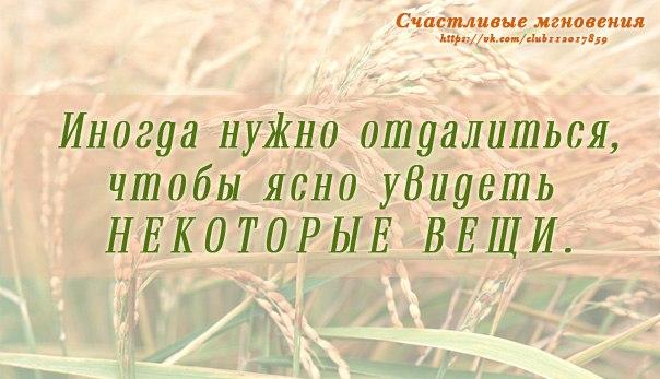 https://pp.vk.me/c628023/v628023960/3ed9c/qHydU0KBGqU.jpg