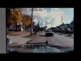 Полицейские застрелили одну из собак напавших на женщину. Огайо, США.