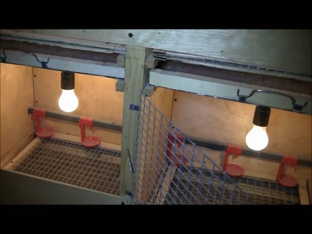 Как сделать самодельный инкубатор под перепелов курей гусят.утят видео