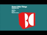 Some Little Things - Perspectiva (Magnetic Brothers Remix)