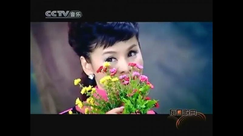 苏联歌曲《红莓花儿开》 Ой цветет калина - 中文版