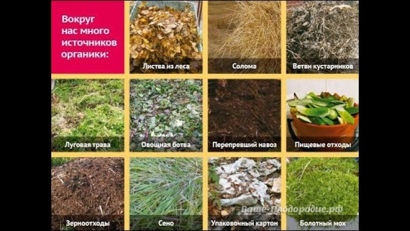 4. Внесение органических остатков - основной способ повышения плодородия почвы (Рябов Л.А.)