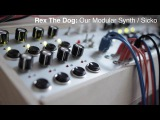 Rex The Dog Our Modular Synth Sicko