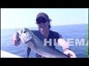 ルアー合衆国 Metalmaruで魚種限定解除 BREADEN