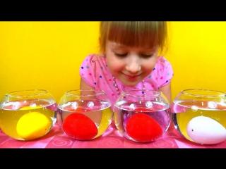 Egg with a surprise to grow eggs Яйцо с сюрпризом Выращиваем мультяшных героев с яйца