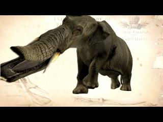 Откуда на Земле доисторические животные.Документальный фильм
