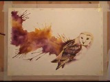 Speed painting watercolour - Barn Owl