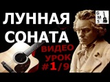 ЛУННАЯ СОНАТА на Гитаре - 19 видео урок. Moonlight Sonata on guitar with tabs