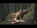 Gerçek Hayvanlarla Çekilmiş Tüyler Ürperten 20 Fotoğraf