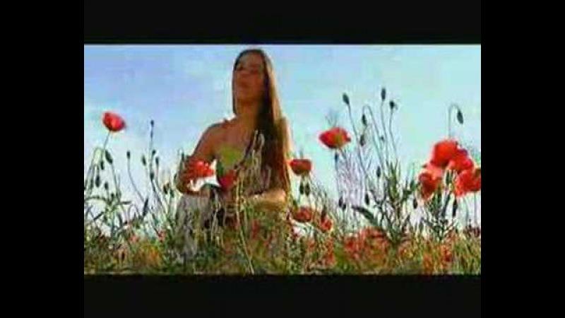 Garavi Sokak - Svako Ima Nekog Koga Vise Nema M.Video ©2004