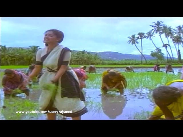 Tamil Song - Enga Ooru Kaavalkaran - Aasaiyile Paathi Katti Naathu Onnu Nattu Vachen (HQ)
