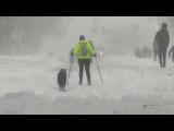 На США обрушился «снегопад века» (новости)