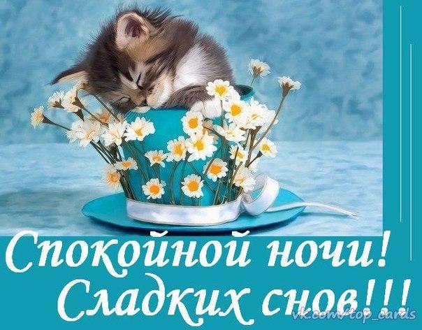 http://cs628026.vk.me/v628026058/541d7/2xFeHwv0ljY.jpg