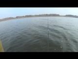 Рыбалка 4 ноября 2015 - Ростовская область Волошинский пруд