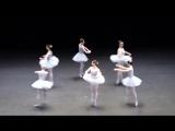 Самый смешной балет, из тех что я видела