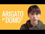 Ask a Japanese Teacher! Whats the difference between ARIGATO and DOMO??