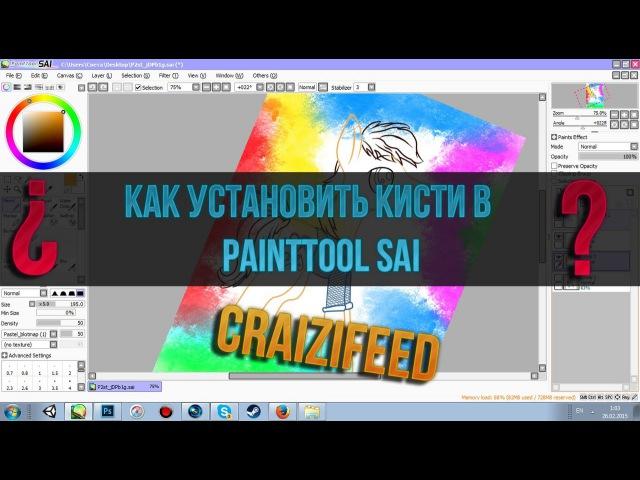 Как установит кисти в PaintTool SAI❓