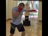 Khabib Nurmagomedov Тренировка ударной техники с renat_abu_ahmad