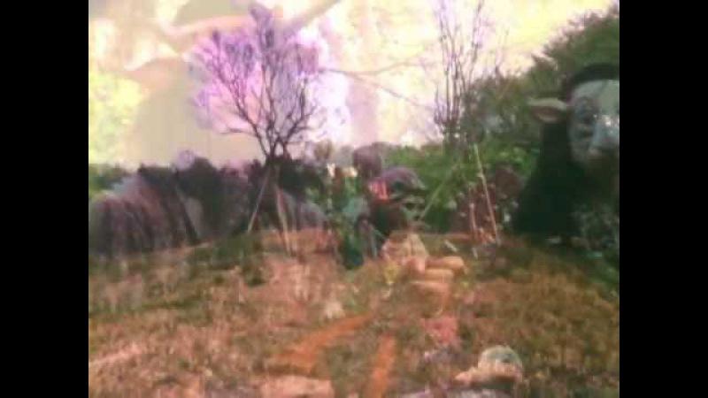 Kikagaku Moyo幾何学模様 Kodama Official Music Video