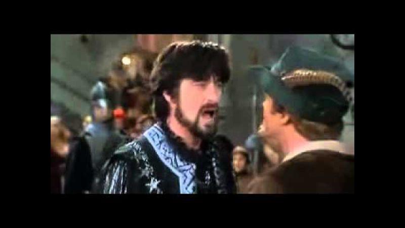 Робин Гуд Мужчины в трико Ты, я и... моя стража!