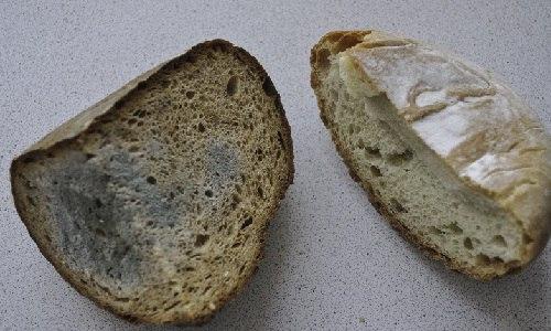Купила хлеб - получила плесень...