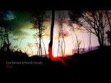 Lisa Gerrard &amp Patrick Cassidy - Elegy