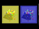 Бо Лотто: Оптические иллюзии показывают как мы видим